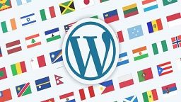 wordpress-multilingual-1